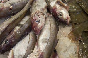 Como escoger el pescado en el mercado