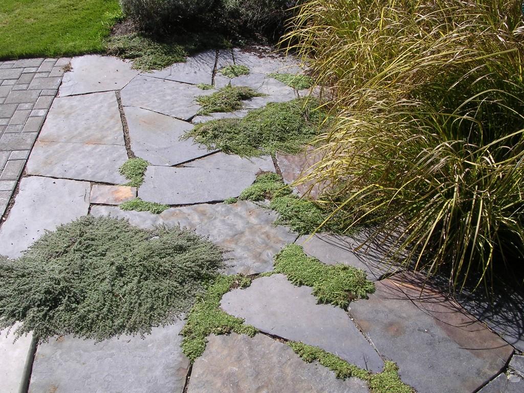 artemis landscaping