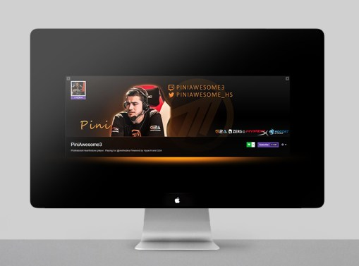 Twitch Profile Banner – Pini