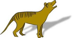 Grafik Tasmanischer Tiger