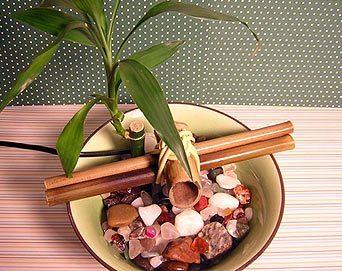 Como Fazer Fonte Japonesa 12 Como fazer uma fonte de bambu passo a passo