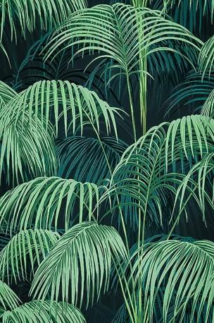 Superb Jungle Wallpaper Deep Colors Wallpaper Roll Of
