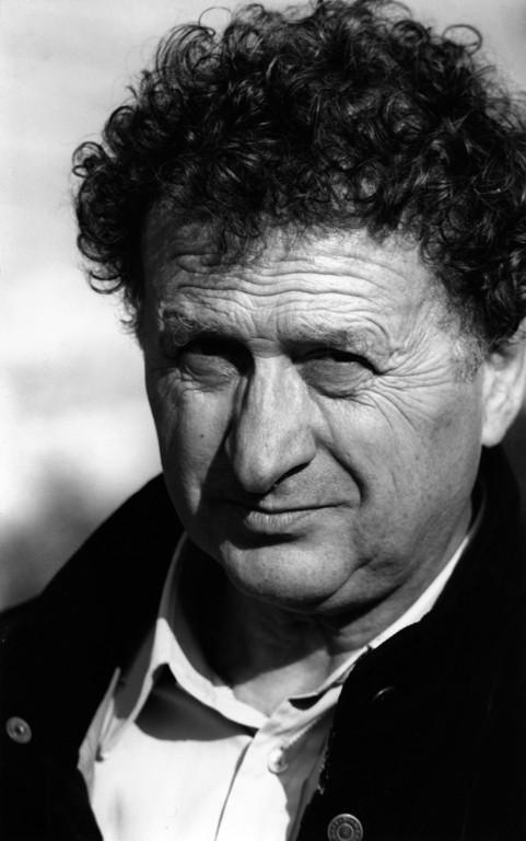 Enrico Manelli