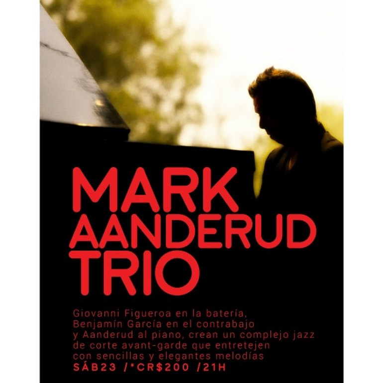 zinco-jazz-club-mark-aanderud-trio
