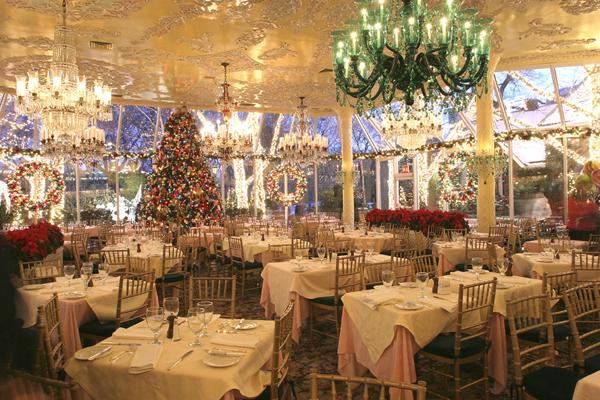 Christmas Lights Green