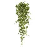 Artar curgator verde 130cm