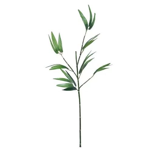 Bambus crenguta 100cm