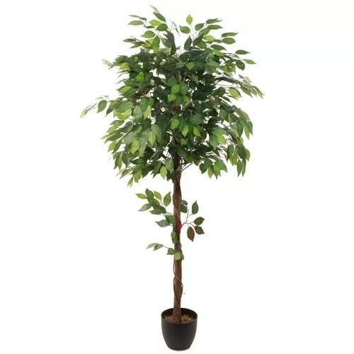 Ficus artificial benjamina globular 170 cm original