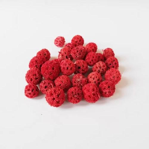 Fructe decorative uscate rosu