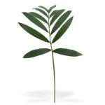 Frunza artificiala Palmier H60
