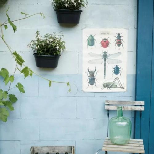 Ghiveci de perete Ehlo Green Basics Wall basket 30cm antracit 02
