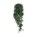 Iedera Artflora 120cm