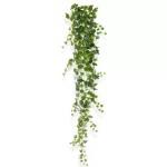 Iedera Artflora 190cm