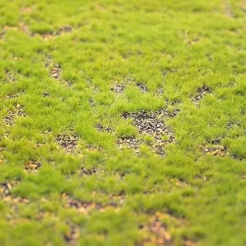 carpeta muschi artificial zoom