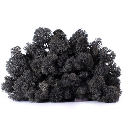 licheni vrac artflora black