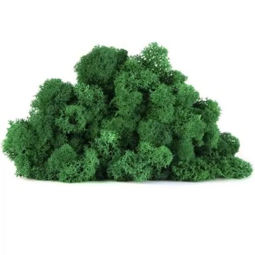 licheni vrac artflora green grass