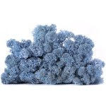 licheni vrac artflora light blue
