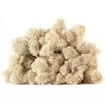 licheni vrac artflora natur