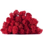 licheni vrac artflora red apple