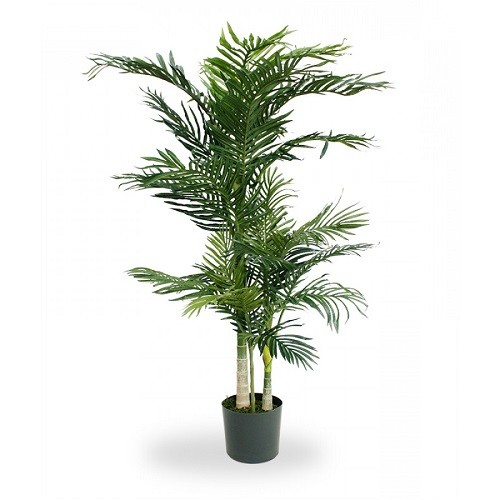 palmier areca gold artificial h150