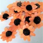 Capete flori margareta orange