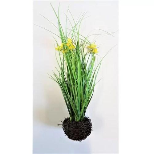 Narcise cu iarba in cuib