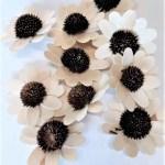capete flori margareta natur