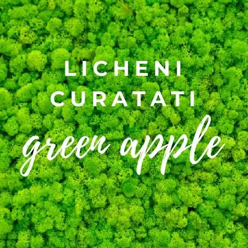 artflora green apple curatati 2
