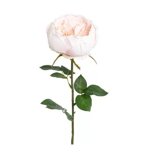 Trandafir fir roz 66cm