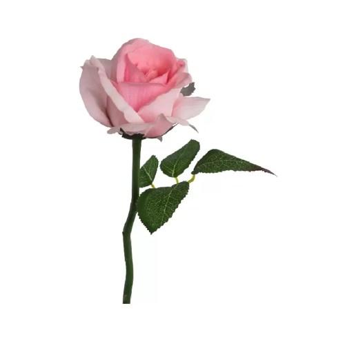 Trandafir fir roz RT 32cm