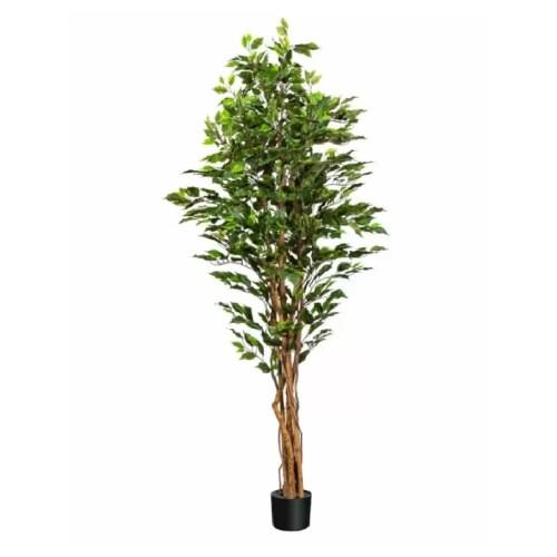 Ficus Benjamina artificial UV 180cm 1