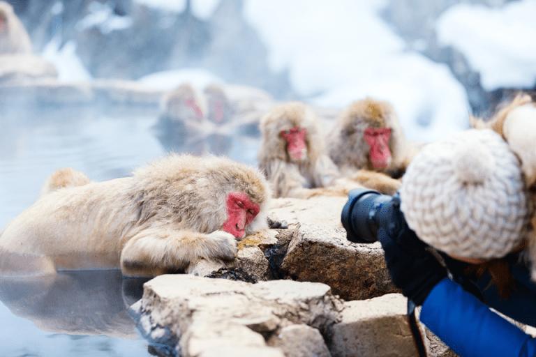 Objek Fotografi Yang Terbaik Di Jepang