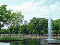 Suasana Seru Pada Taman Yoyogi Kota Tokyo