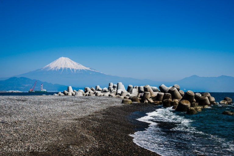 Nikmati Keindahan Gunung Fuji Dan Pohon Legenda Pada Pantai Miho Prefektur Shizuoka