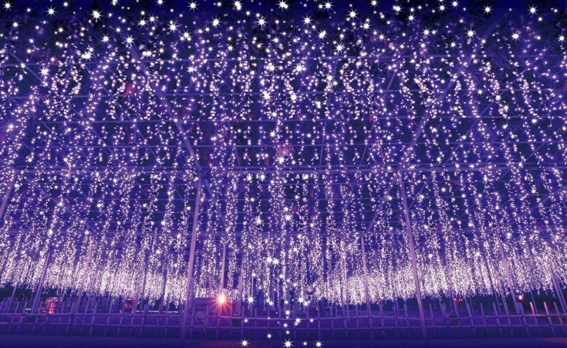 Taman Bunga Ashikaga Yang Populer Di Jepang