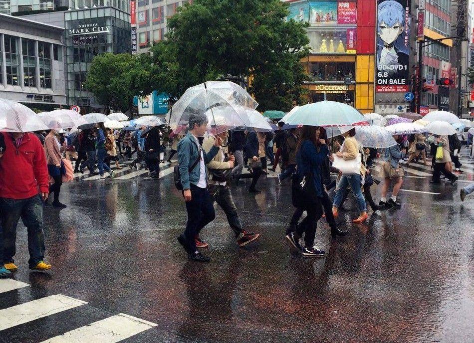Kenali Musim Hujan Di Jepang