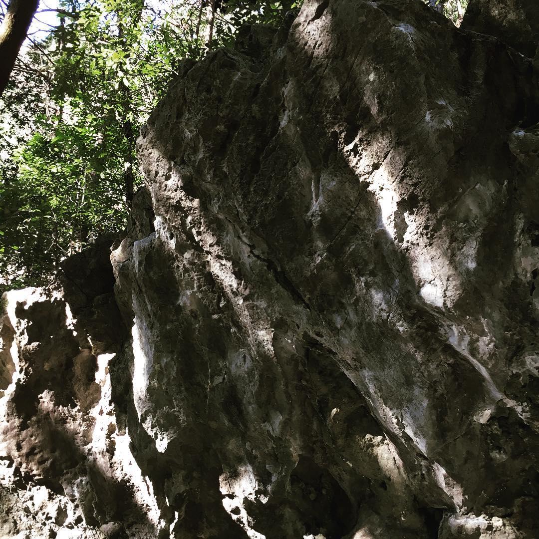 Wisata Panjat Tebing Di Shounin Iwa Prefektur Saitama