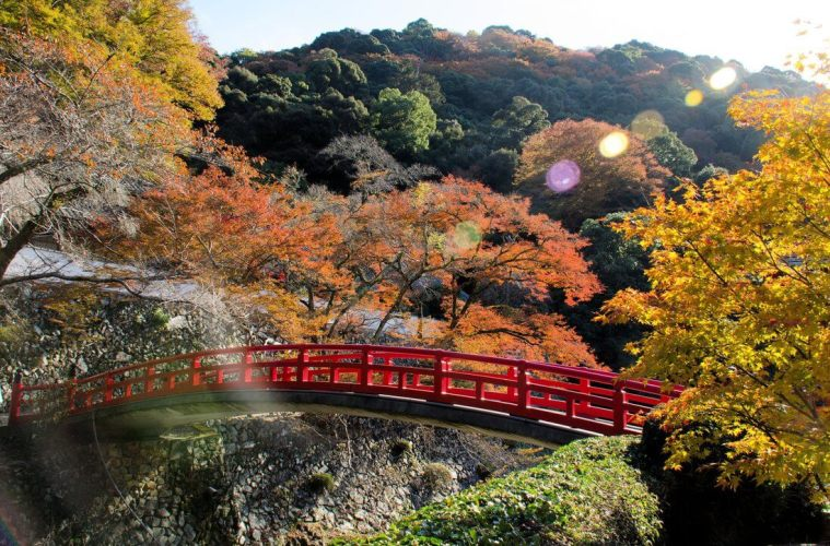 Keindahan Alam Di Taman Minoo Prefektur Osaka