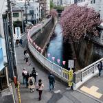 6 Fakta Menarik Mengenai Negara Jepang