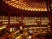 Menghabiskan Waktu Di Perpustakaan Colosseum Nakajima Sambil Membaca Dan Belajar