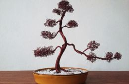 Suka Dengan Bonsai? Yuk Lihat Cara Membuat Pohon Bonsai Buatan