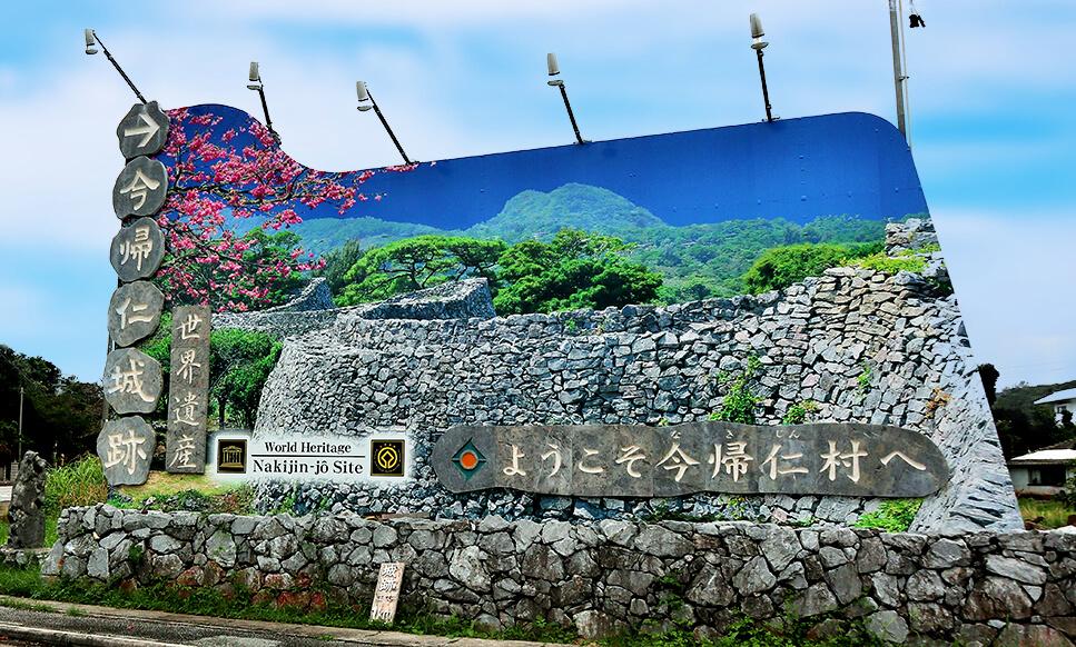 Ingin Menikmati Indahnya Bunga Sakura Dengan Suasana Yang Berbeda ?? Yuk, Kunjungi Hikan Zakura Di Okinawa !