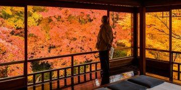 Keindahan Musim Gugur Yang Sempurna Dari Kuil Rurikoin Di Kyoto