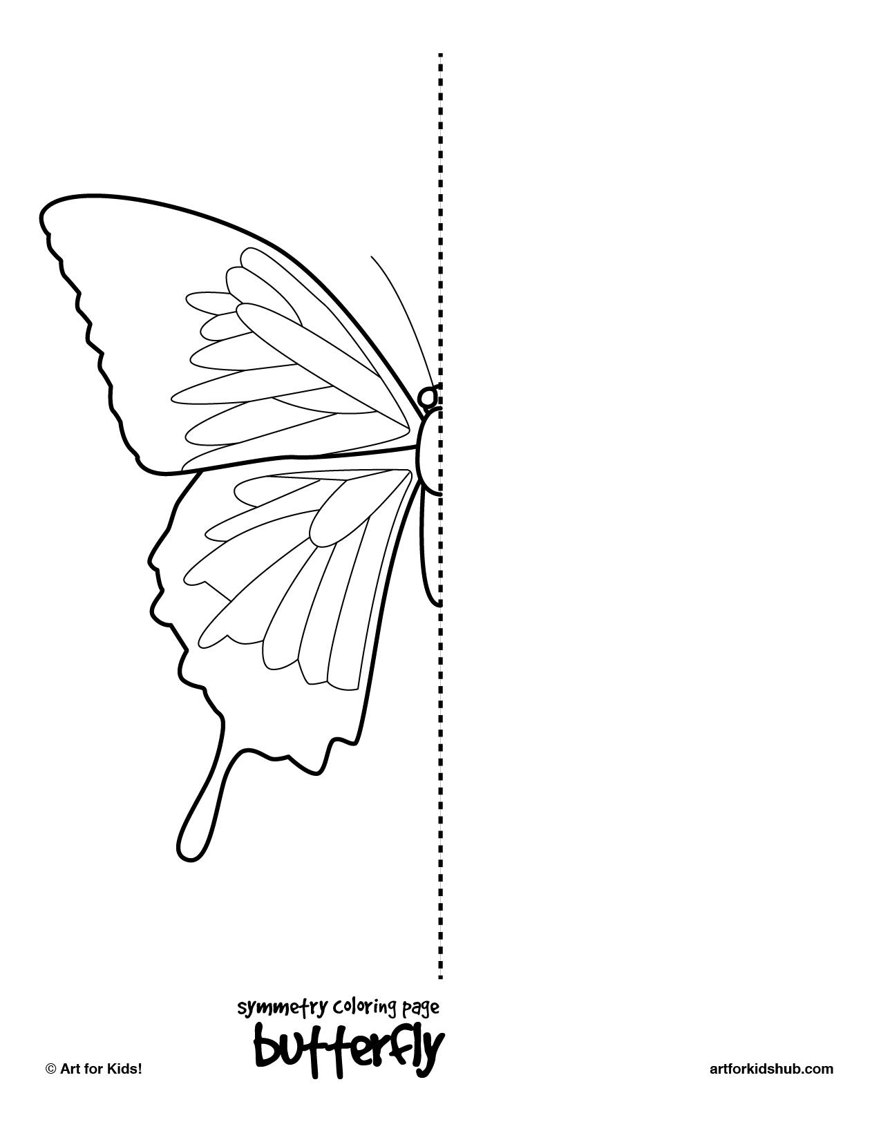 Bilateral Symmetry Animal Worksheet