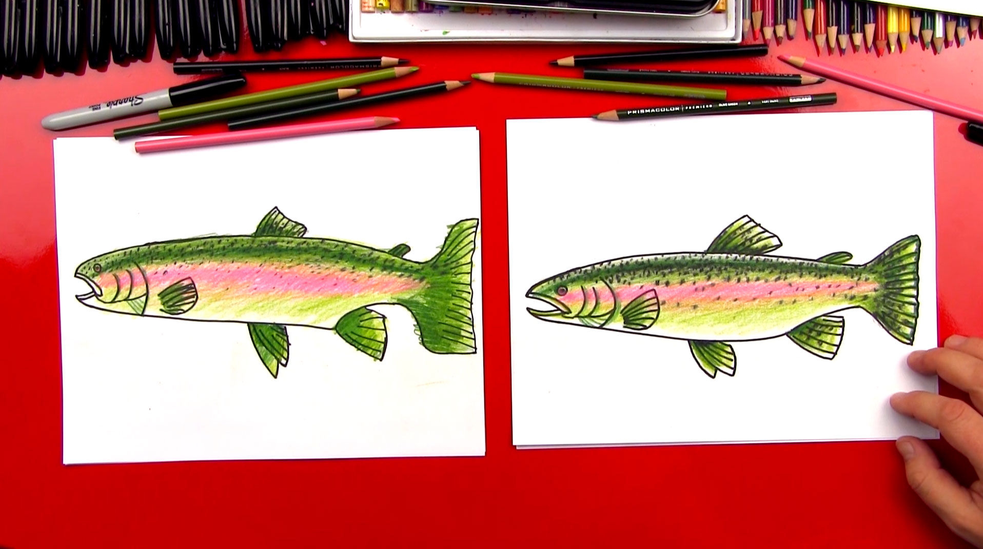 How To Draw A Rainbow Trout Realistic Art For Kids Hub
