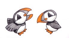 Image result for puffins drawing
