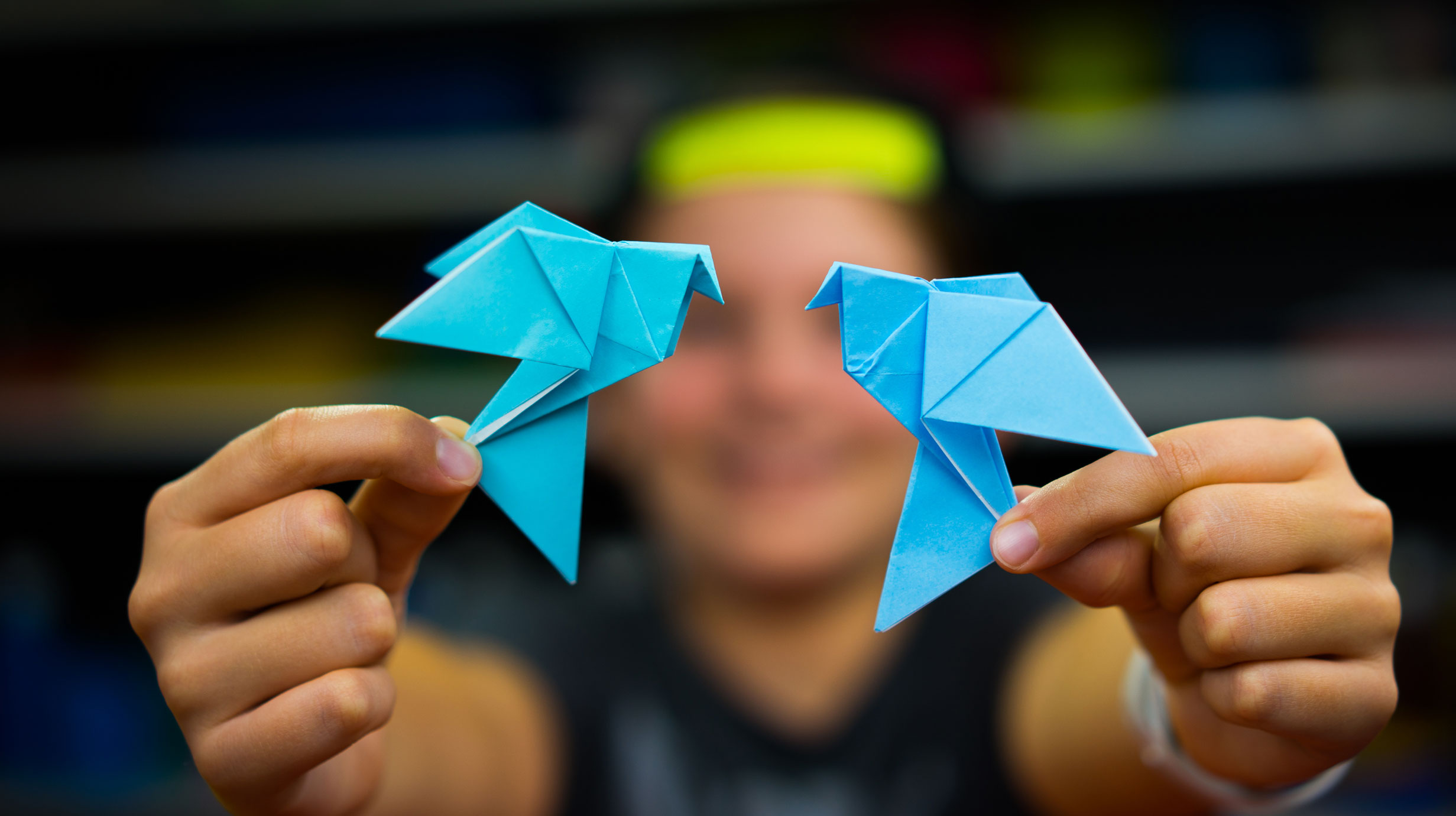 How To Fold An Origami Dove Art For Kids Hub