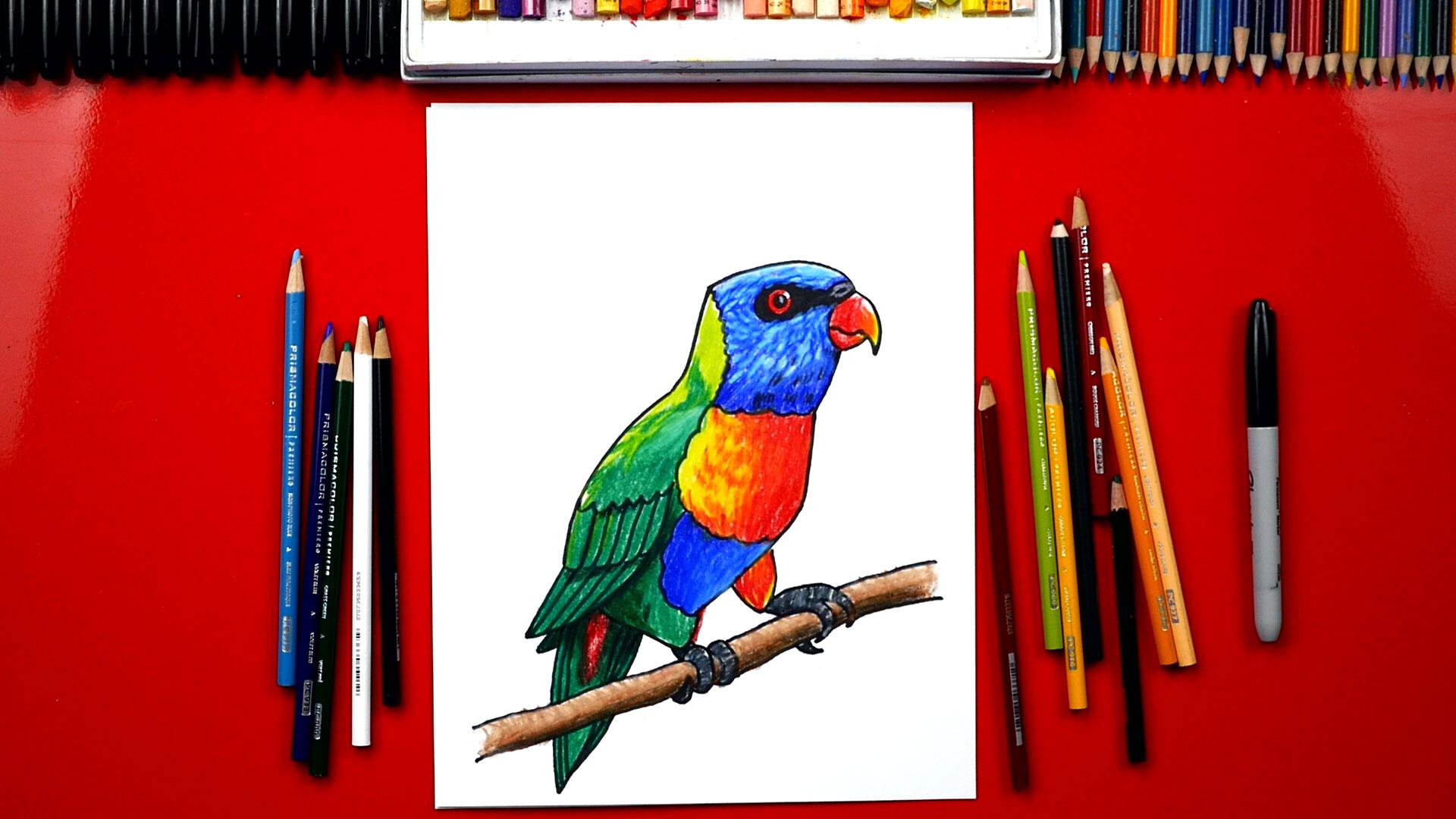 How To Draw A Realistic Rainbow Lorikeet Art For Kids Hub