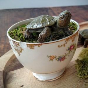 Adorable Bronze Turtle