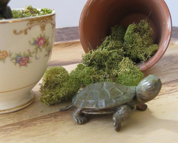 bronze mini turtle